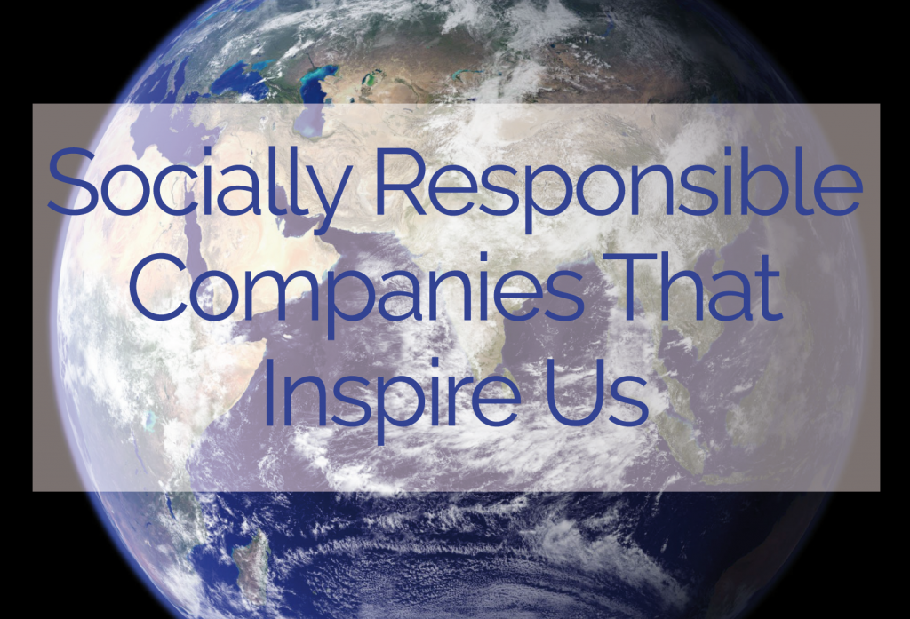 fonterra as a socially responsible company A look at corporate social responsibility in fonterra definition: csr is seriously considering the impact of the company's actions on society.